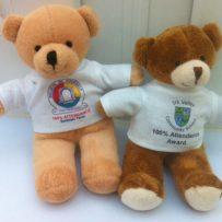 School Attendance Teddy Bears