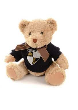 Embroidered Teddy Bear