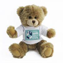 Personalised Teddy Bears for Schools