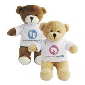 Nottingham NHS Standard Bear