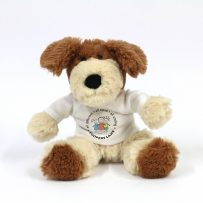 Personalised Dog Teddy